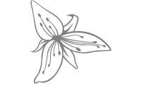 Samolepka v balení -Liliový květ
