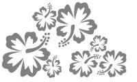 Samolepka v balení -Ibiškové květy
