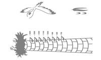 Samolepka v balení -Čapí hnízdo