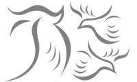 Samolepka v balení -Holubičky