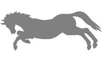 Samolepka v balení -Divoký kůň
