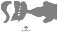 Samolepka v balení -Kocour
