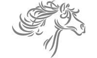 Samolepka v balení -Mustang