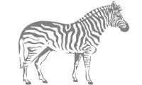 Samolepka v balení -Zebra