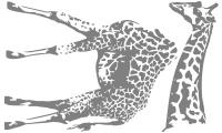 Samolepka v balení -Žirafa masajská