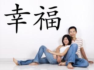 Čínský znak štěstí samolepka na zeď
