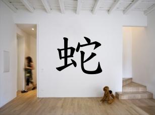 Čínské znamení zvěrokruhu - had samolepka na zeď
