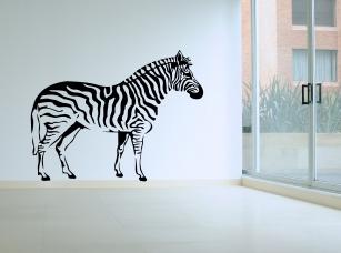 Zebra samolepka na zeď