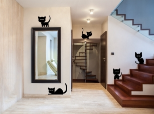 Koťátka samolepka na zeď